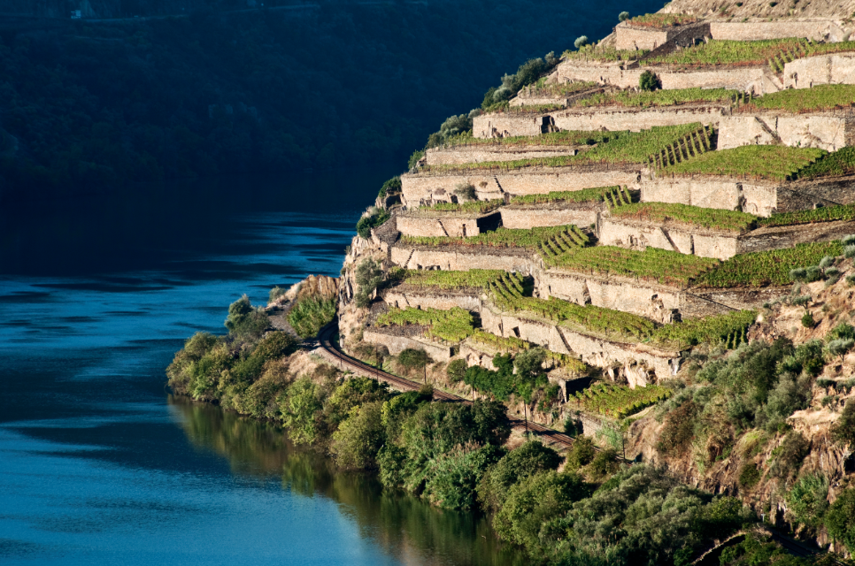 douro valley, douro tours, guide to douro