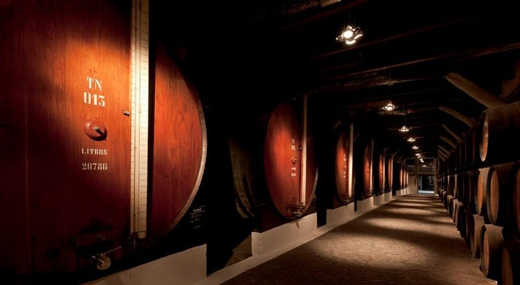 caves sandeman, port wine cellars, things to do in porto, wine tasting in porto