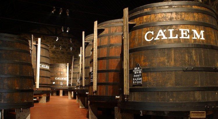 wine tasting tours in porto caves Calém