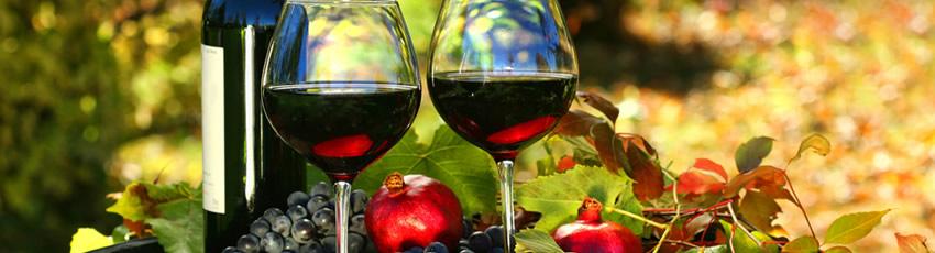 European Wine Destinations
