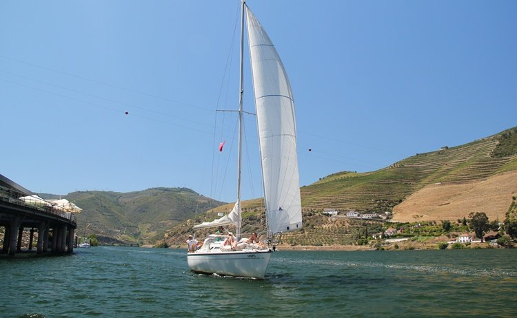 The Best Cruises in the Douro River
