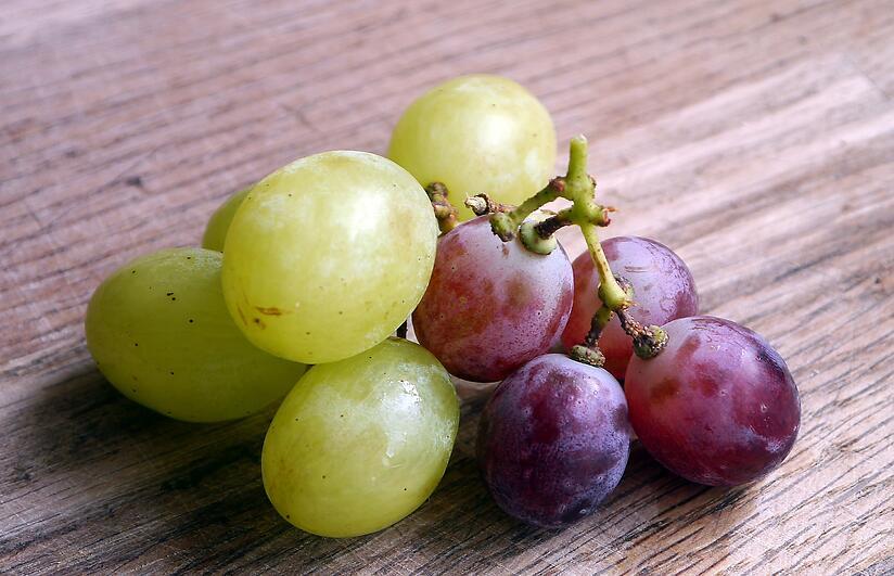 vinotherapy or vinotherapie spa