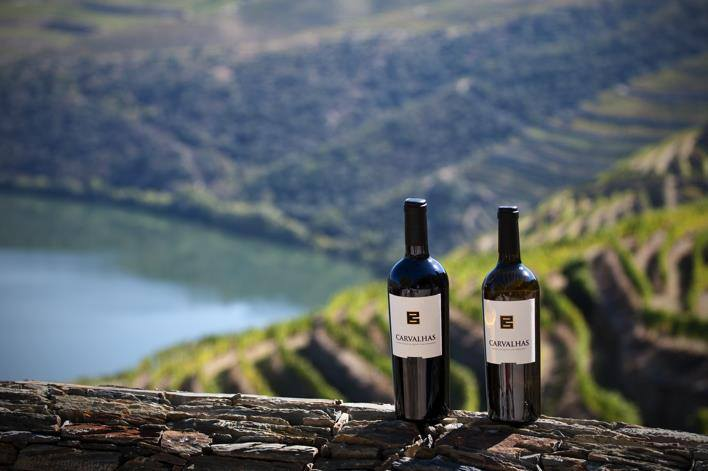 wine tasting tours, douro, port wine