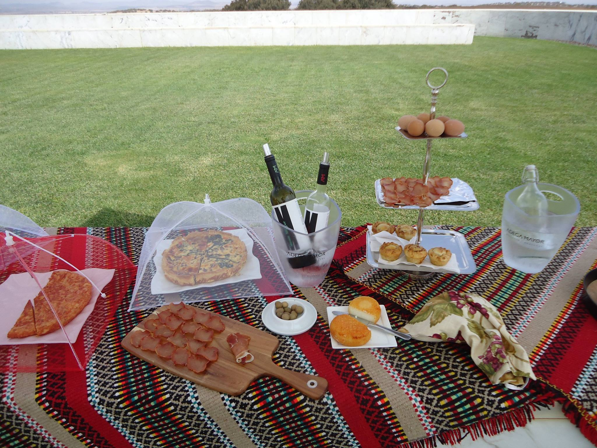 picnic, winery, vineyard, alentejo, adega mayor