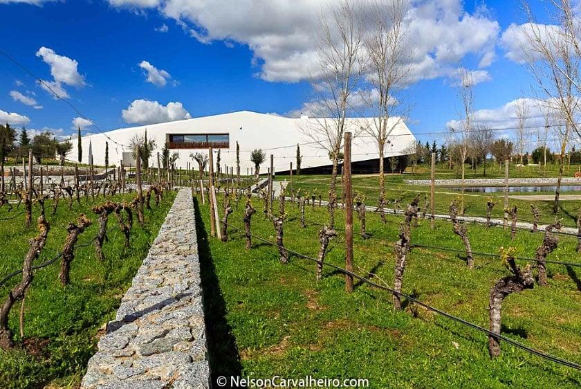 Best Alentejo Wineries - L'AND Vineyards