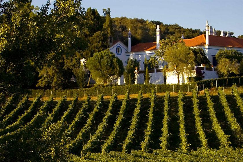 Best Alentejo Wineries - Monte da Ravasqueira