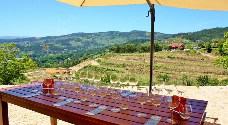 Quinta de Santa Cristina Wine Tasting