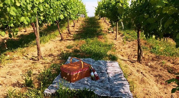 Facts About Portuguese Wine - Vinho Verde Wine Region
