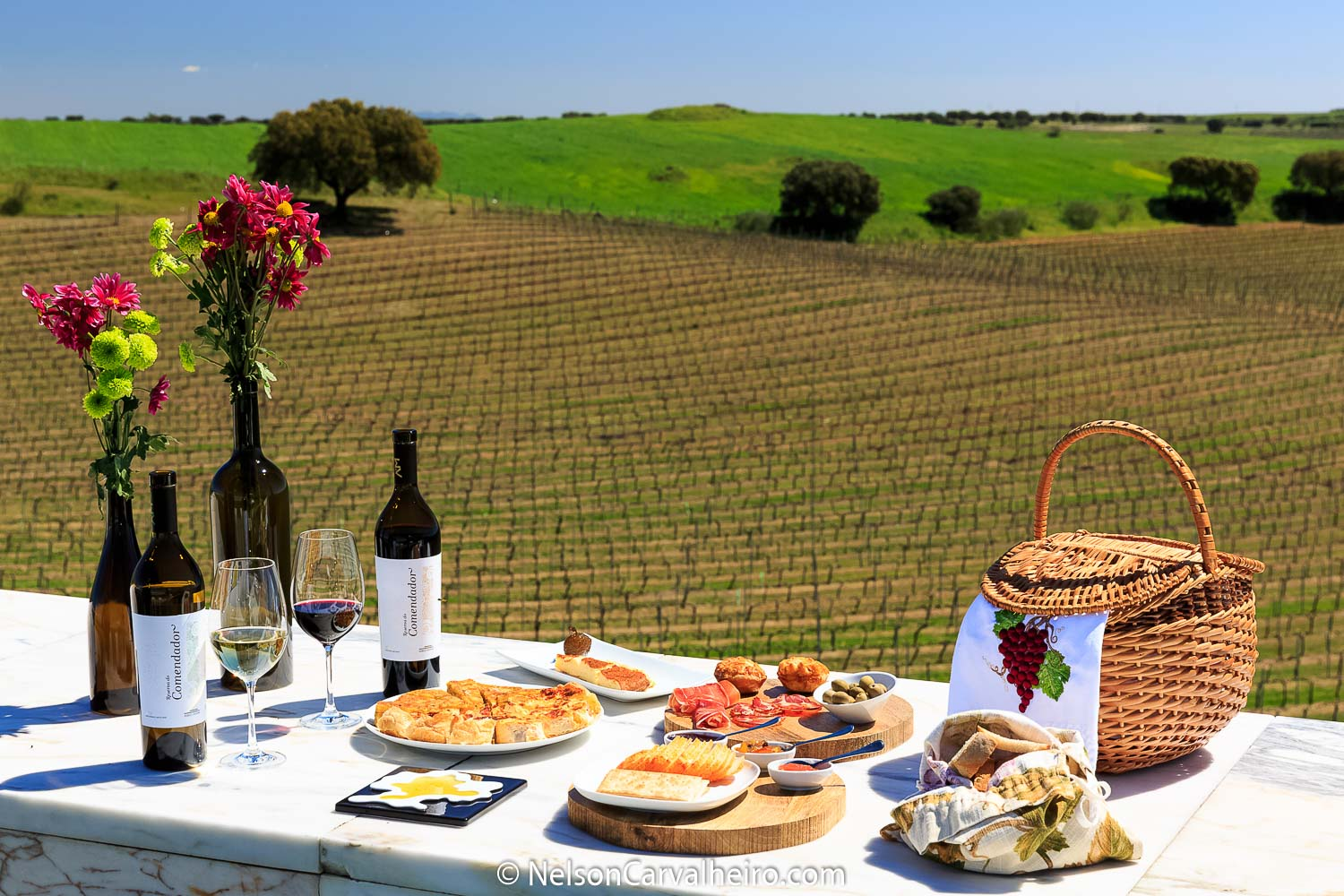 Alentejo Wine Travel Guide - Adega Mayor- Food & Wine Experience