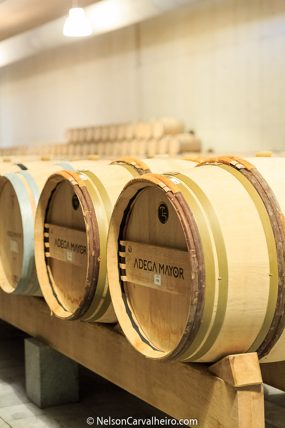 Alentejo Wine Travel Guide - Adega Mayor - Wine Casks