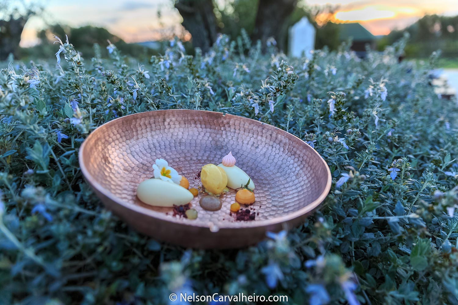 Alentejo Wine Travel Guide - Divinus Restaurant - Summer/Spring Menu Detail
