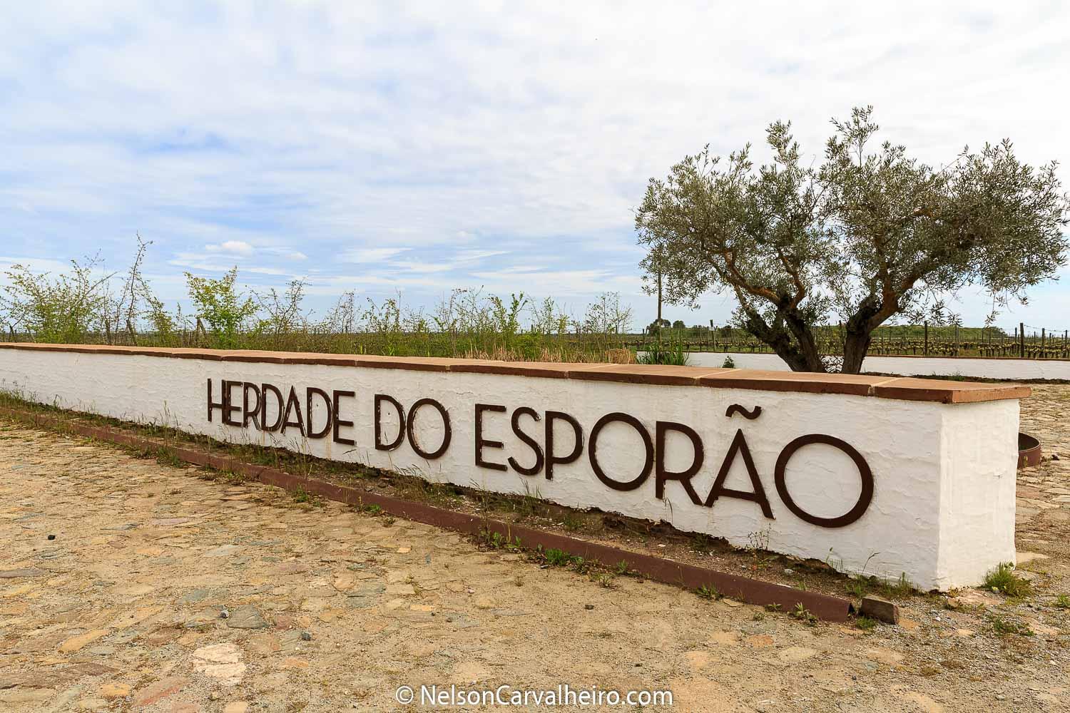 Alentejo Wine Travel Guide - Herdade do Esporão