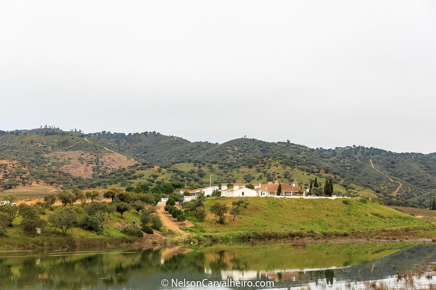 Alentejo Wine Travel Guide - Herdade do Sobroso