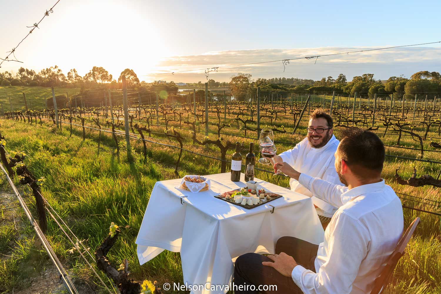 Holiday in Alentejo - Lunch with Winemaker