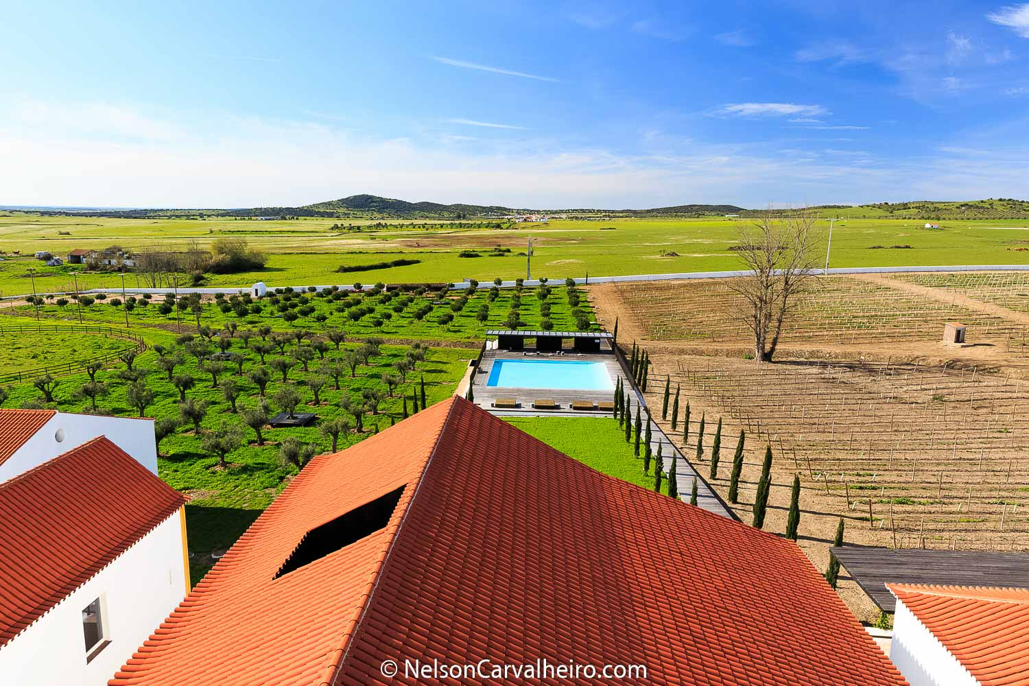 Alentejo Wine Travel Guide - Torre de Palma Wine Hotel Overview