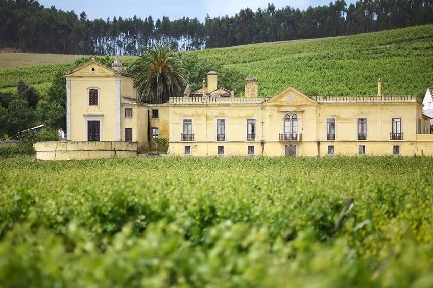 Portugal Wine Regions - Lisbon