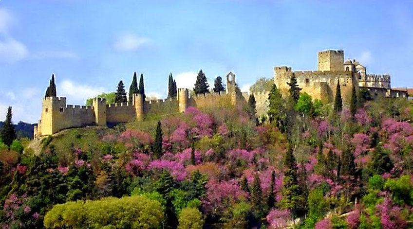 Portugal Wine Regions - Tejo
