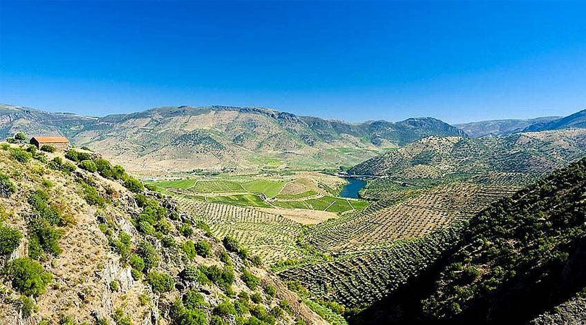 Portugal Wine Regions - Trás-os-Montes