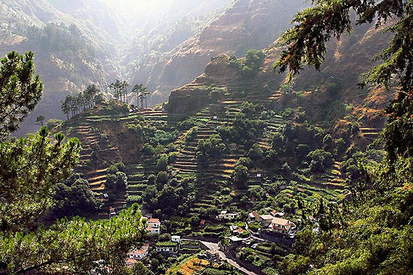 Portugal Wine Travel Tips - Madeira Island