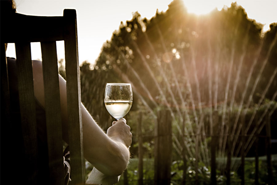 Portugal Wine Travel Tips - Plan in Advance