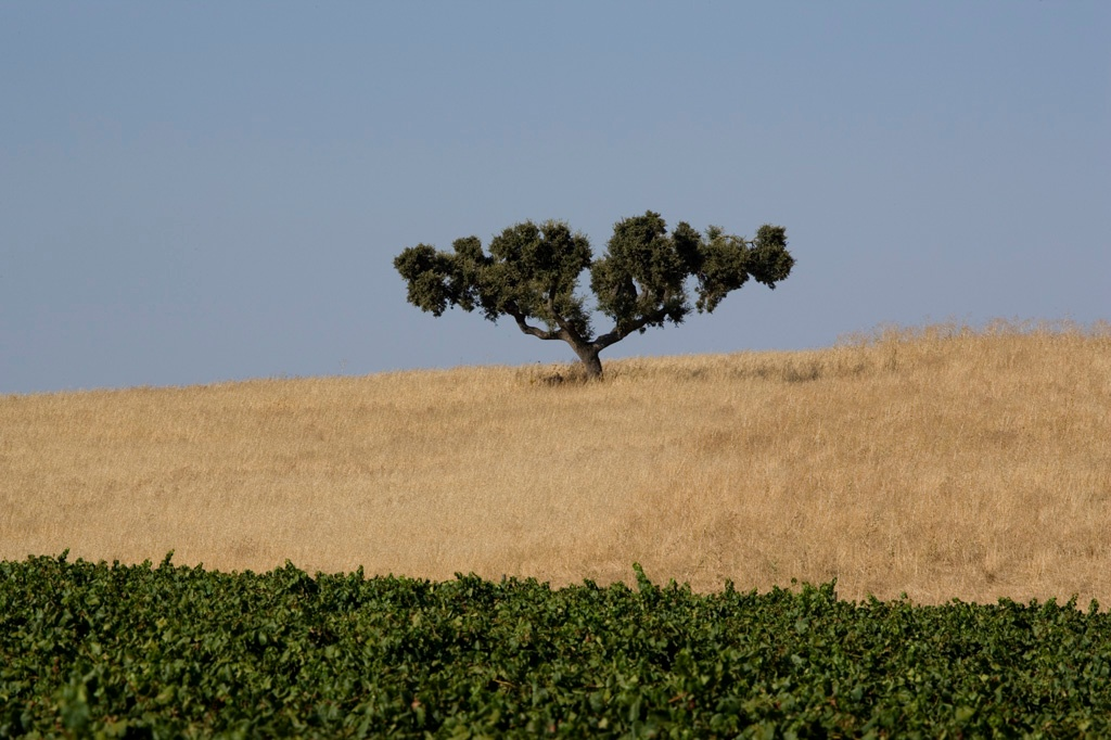 alentejo, travel tips