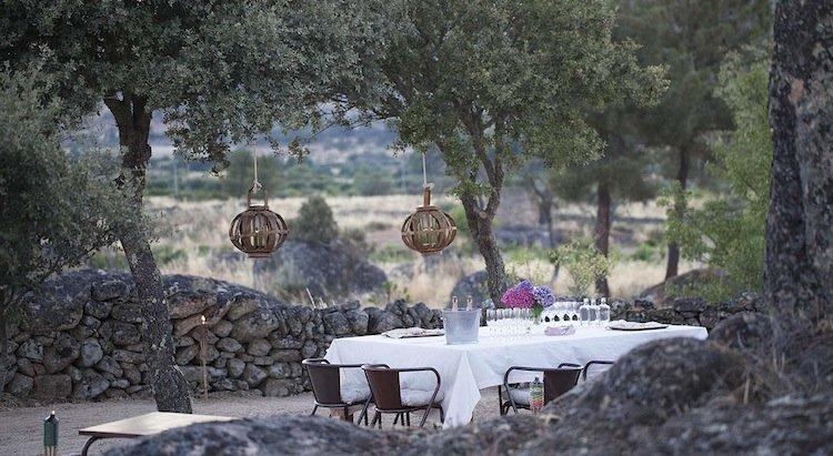 gourmet, private picnic, vineyard, portugal