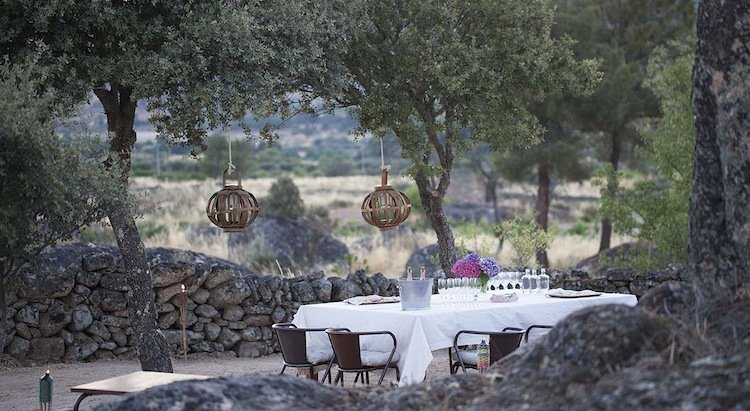gourmet, private picnic, vineyard, portugal