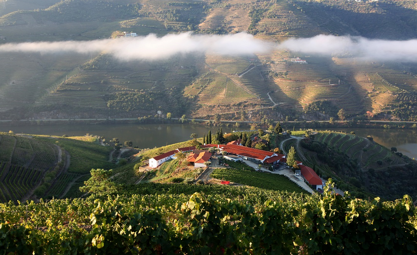Best wine hotels in portugal