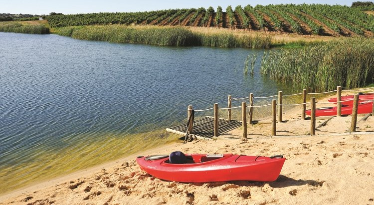 tour in alentejo, circuit in alentejo, wine estates, wine tasting, wines from alentejo