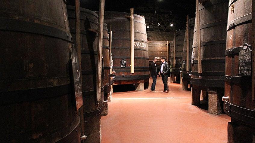 Marcelo Copello at Calem Port Wine Cellar in Portugal