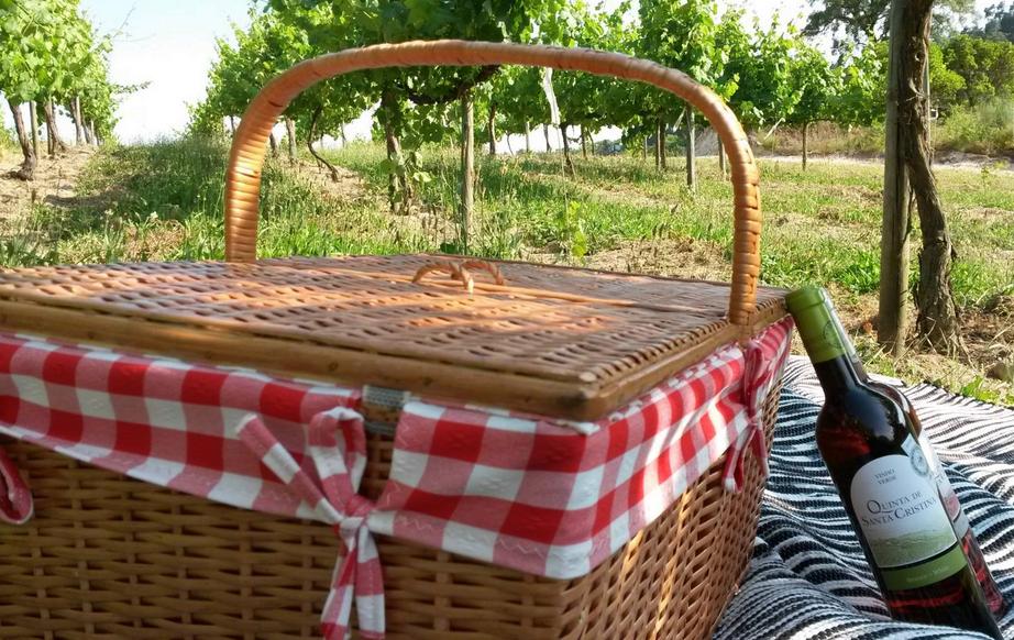picnic, quinta de santa cristina, vinho verde, portugal, vineyards, winery