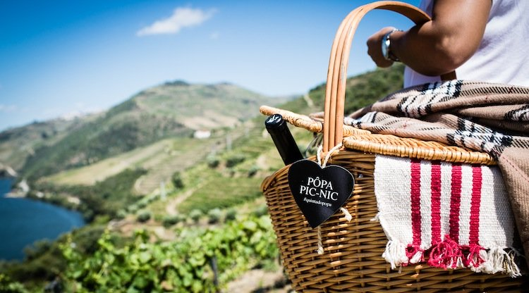 quinta_do_popa_picnic, vineyards, douro valley, wine tasting tours