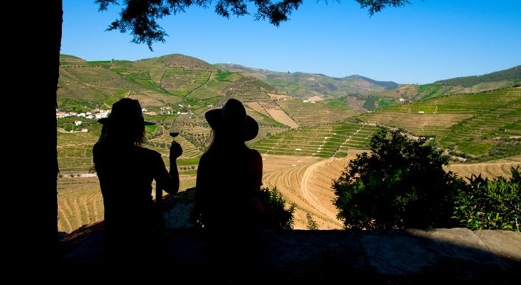quinta_do_seixo, picnic, vineyard, portugal, douro