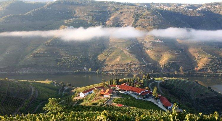 quinta_nova, wine tasting in douro, wine tours, make your own wine
