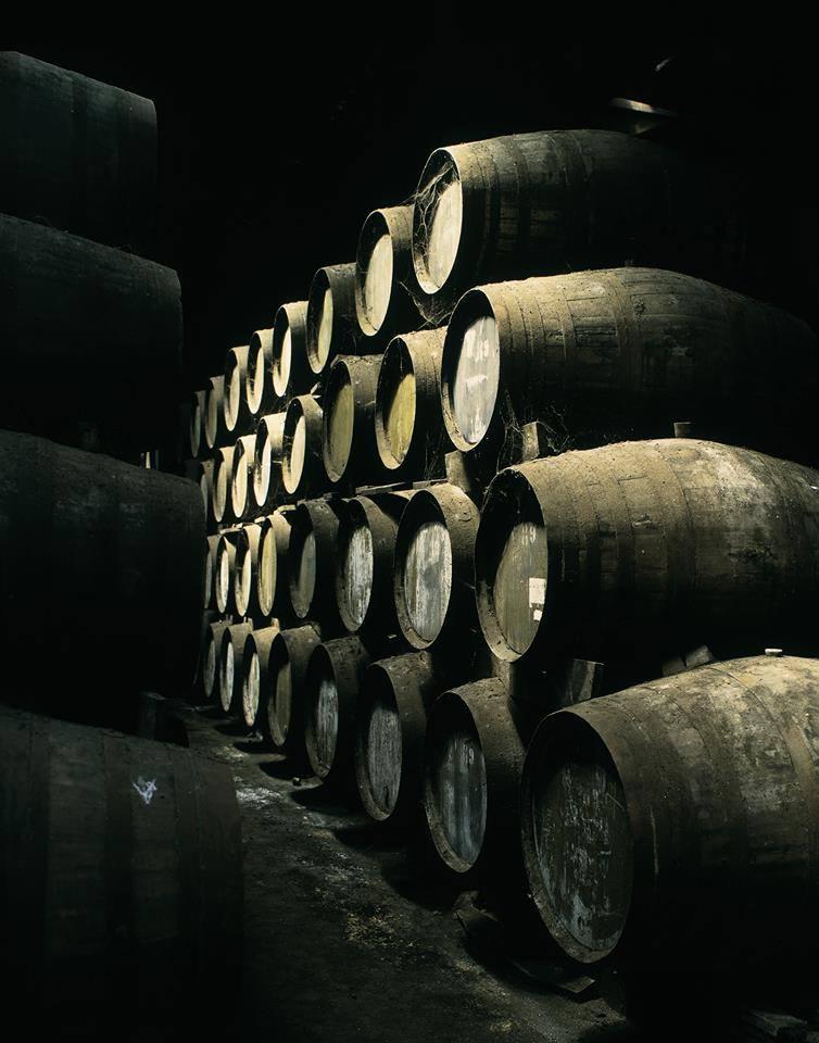 real comapnhia velha, quinta das carvalhas, porto, what to do in porto, best things to do in porto, port wine cellars, best port wine tours, best wine tours in porto