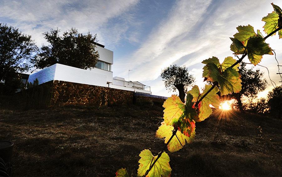 Setubal Peninsula Top Destinations - Serenada Enoturismo Winery