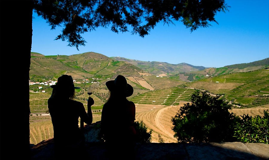 Wine Tourism in Portugal Great Experiences
