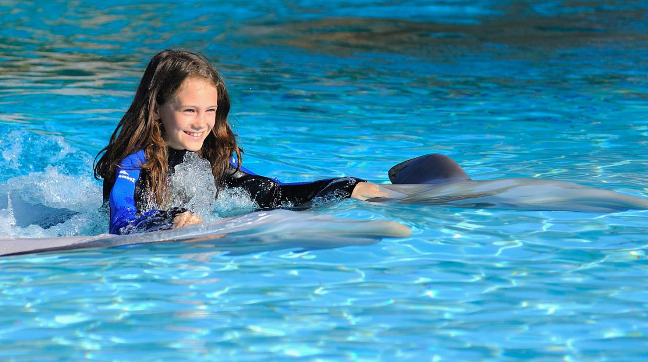 Vacations in Algarve - Swim With Dolphins in Algarve