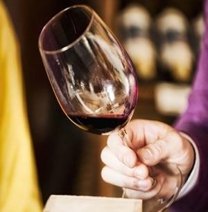 Companhia das Lezírias; Lisbon Wine Tours; WIne Tasti