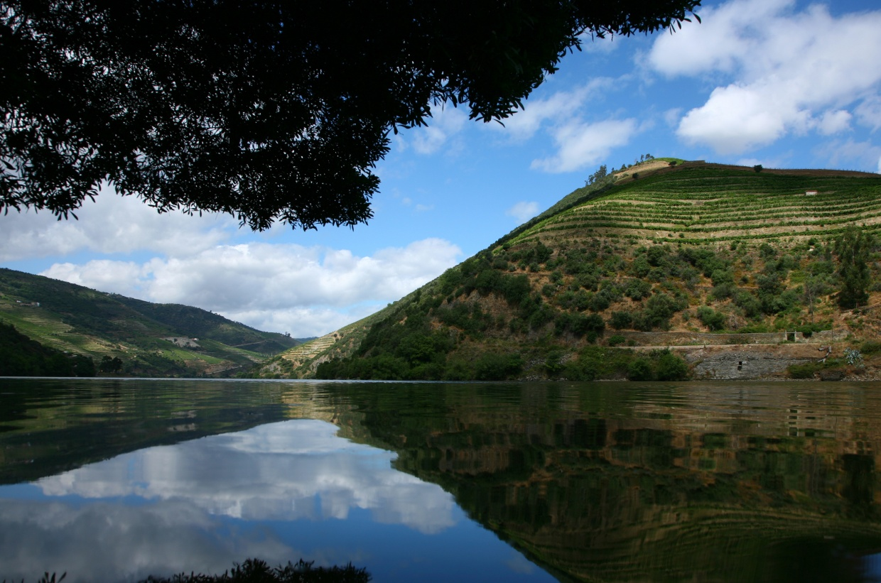 Douro_river_[5712-LARGE]