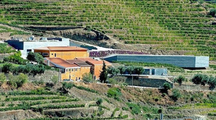 Two Day Short Break in Douro - Quinta do Vallado