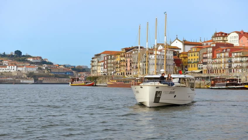 FeelDouro; Douro River Cruise