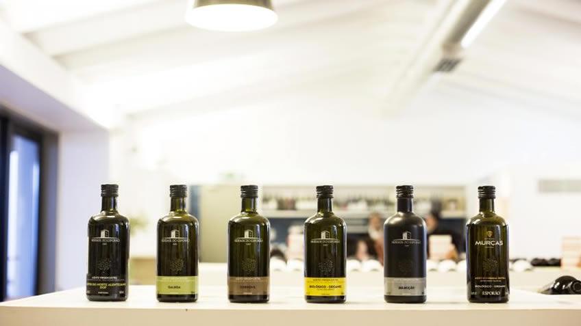 Herdade do Esporão; Wine Tasting in Alentejo; Wine and Food Tour in Alentejo; olive Oil Tasting Alentejo