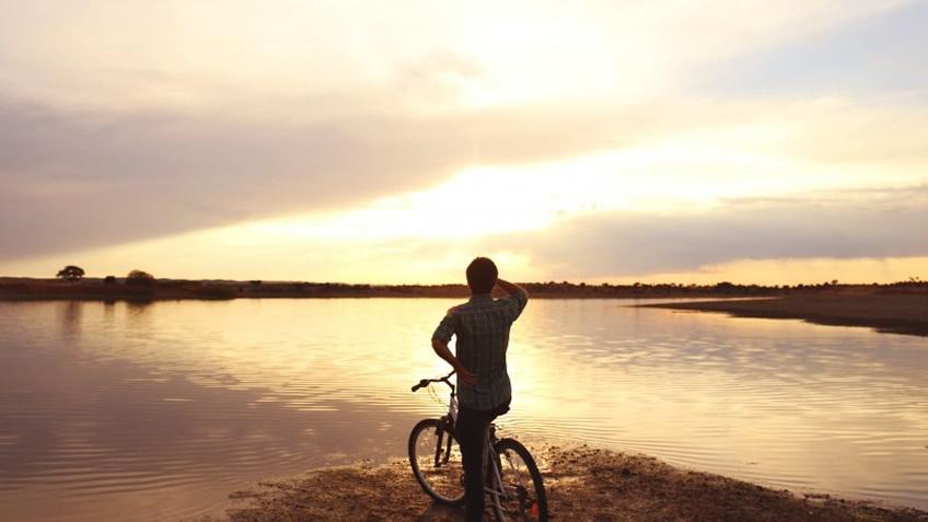 Herdade do Esporão; Bike Ride in Alentejo; Wine Tasting in Alentejo; Day Trip in Alentejo from Lisbon