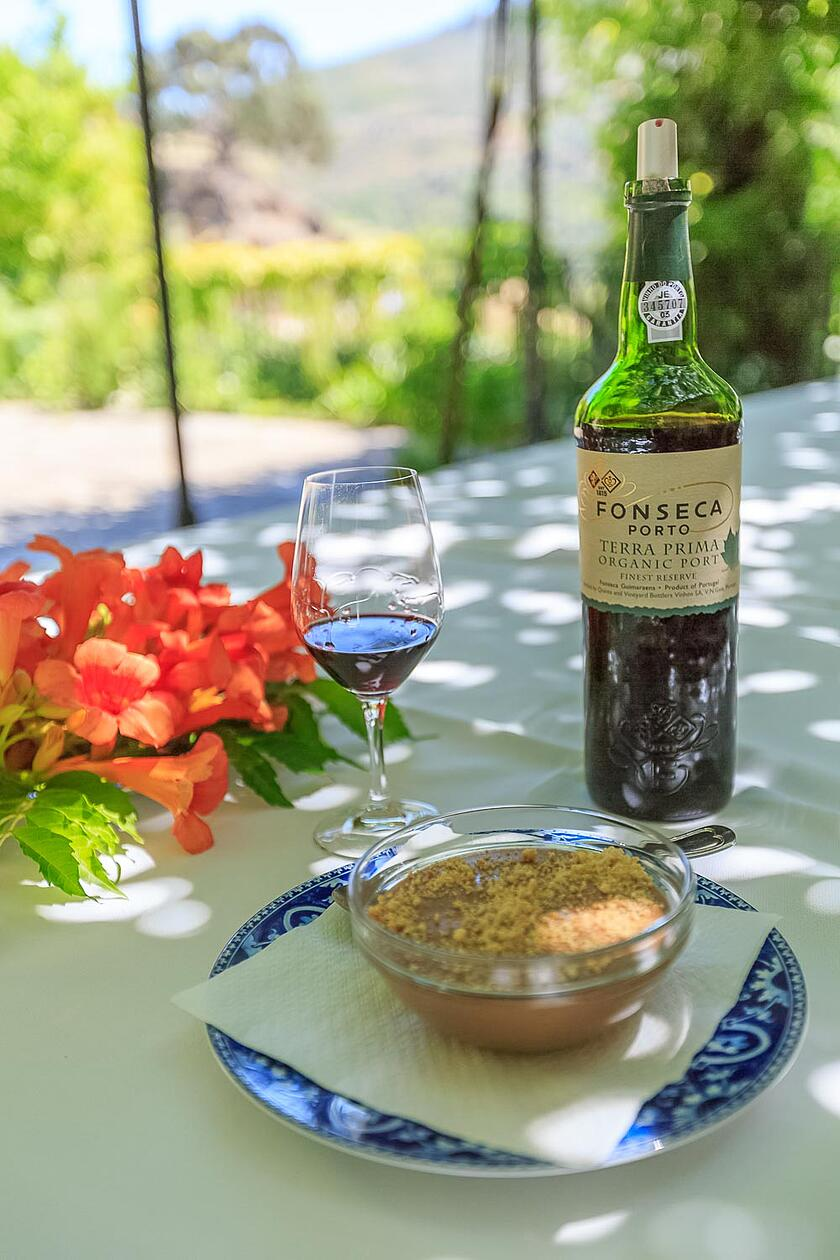 Best wine & Food Experiences in Douro, Nelson_Carvalheiro_Douro_Quinta_Do_Panascal_5