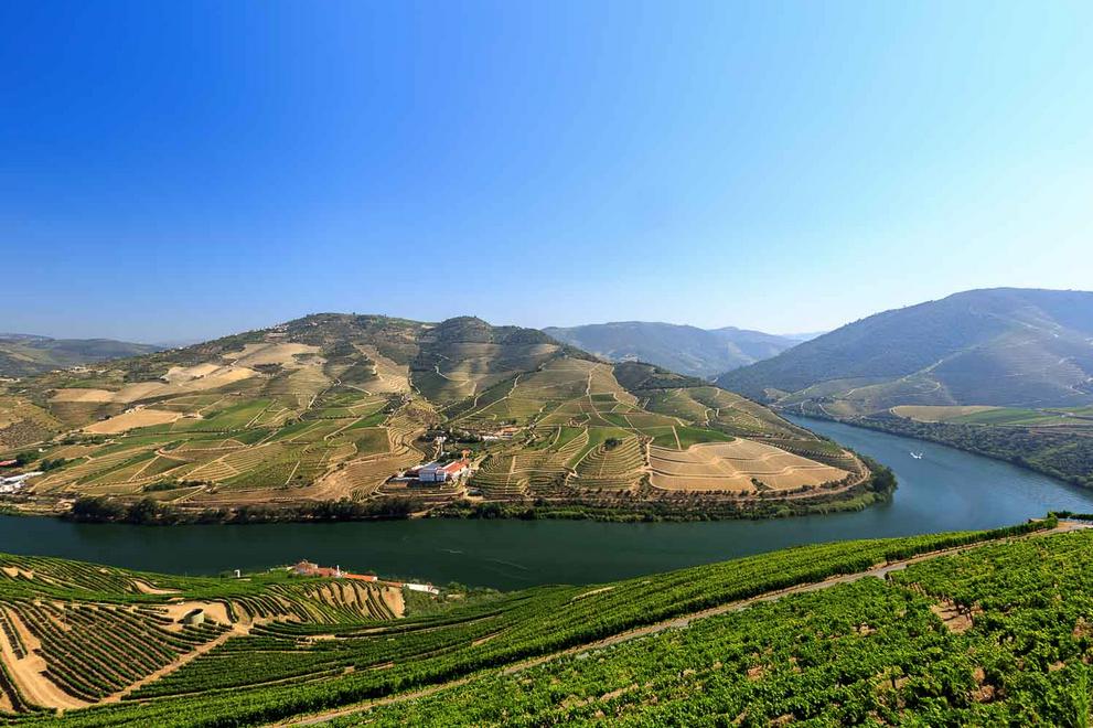 nelsondouro20, nelsondouro27, best wine experiences in douro, wine tastings in douro