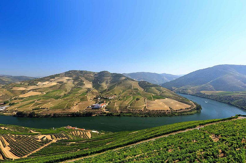 nelsondouro20, nelsondouro27, best wine experiences in douro, wine tastings in douro