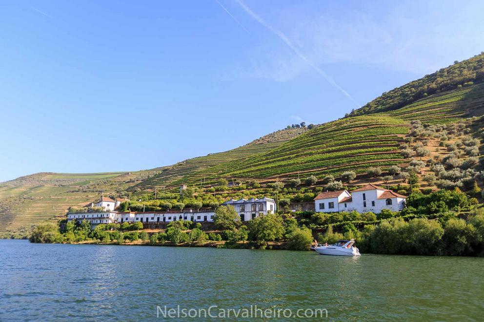 nelsondouro3, douro, douro valley, douro guide, wine travel guide