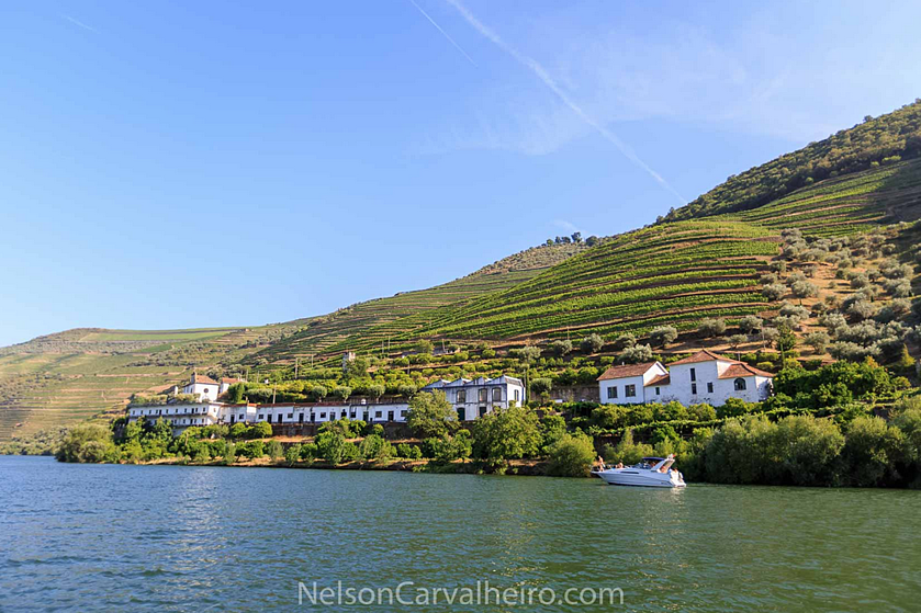 nelsondouro3, douro, douro valley, douro guide, wine travel guide