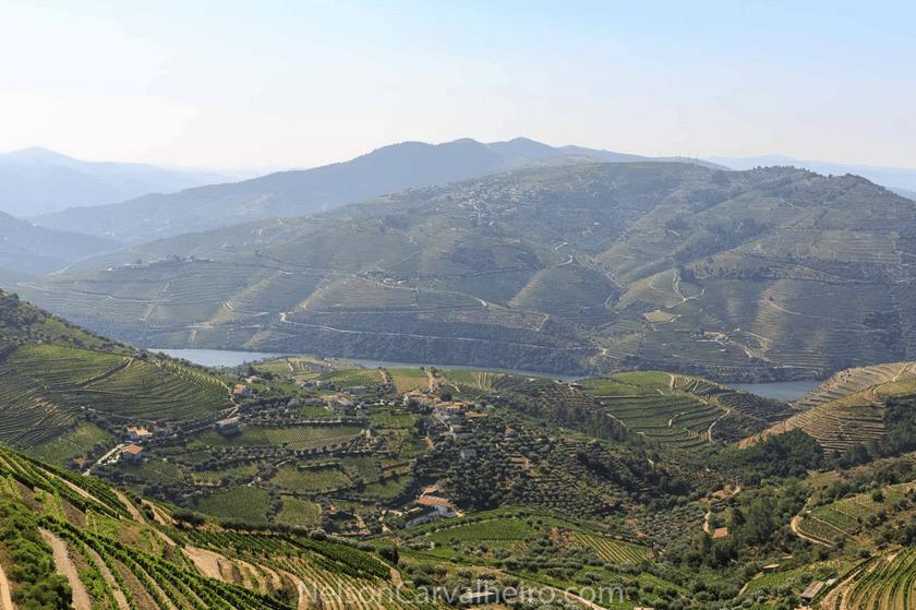 nelsondouro4, douro, douro valley, douro guide, wine travel guide